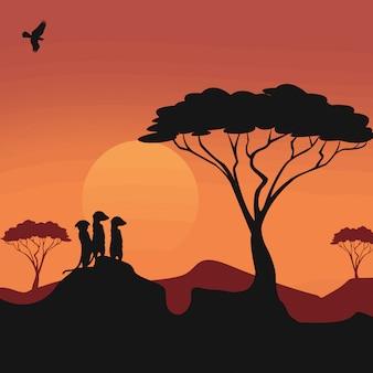 Meerkats-silhouetten-landschaft
