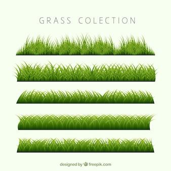 Mehrere grüne gras grenzen in realistischen design