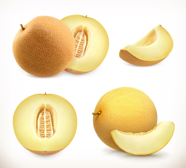 Melone. süße fruchtikonen eingestellt. realistische illustration