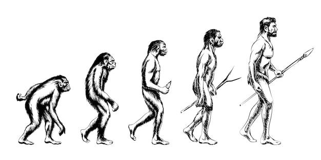 Menschliche evolution. affe und australopithecus, neandertaler und tier