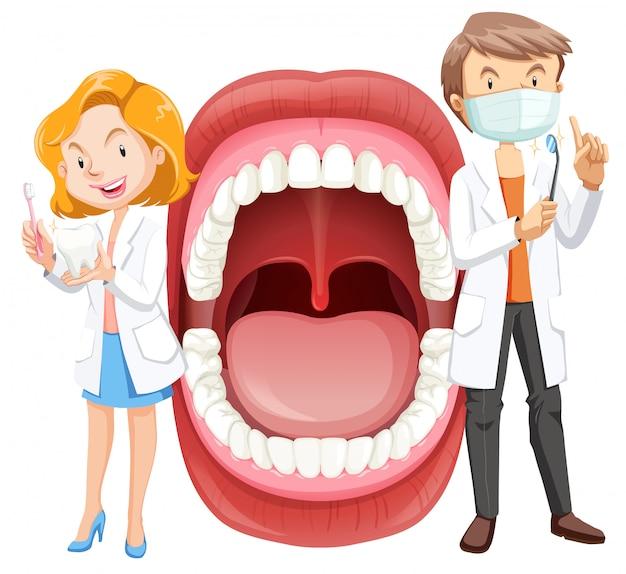 Menschliche mundanatomie mit zahnarzt