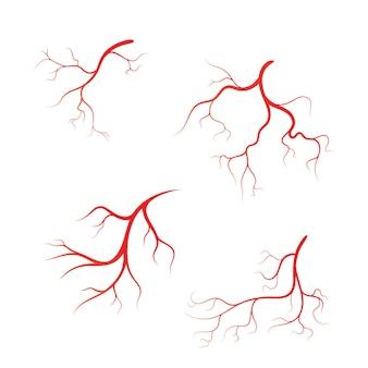 Menschliche vene vektor symbol symbol design illustration