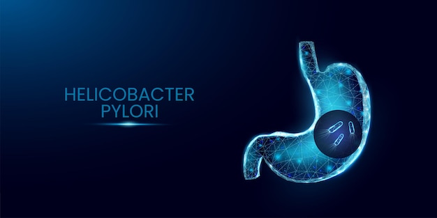 Menschlicher magen und helicobacter pylori. wireframe-low-poly-stil. glühende polygonale bakterienzellen isoliert auf dunkelblauem hintergrund. vektor-illustration.