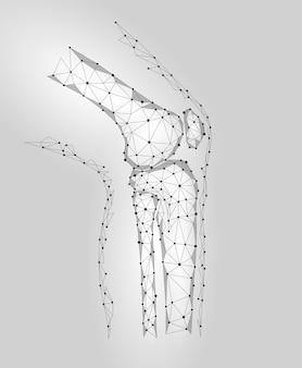 Menschliches kniegelenk 3d vorbildliche vektorillustration. low poly
