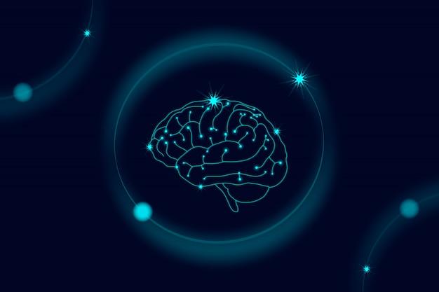 Menschliches nervensystem