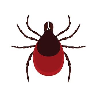 Milben parasiten. zeckenparasit. akarus.