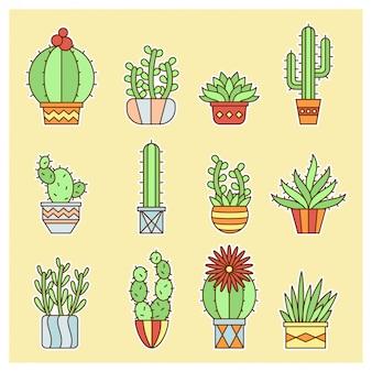 Mini cactus design set