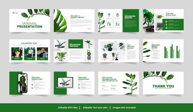 Minimale grüne präsentation oder google slides-vorlage