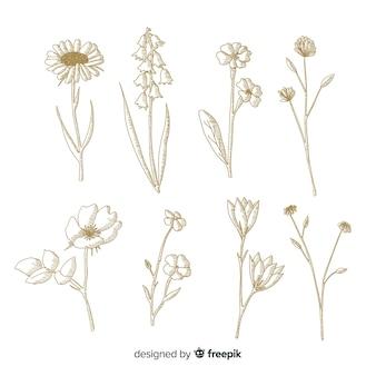 Minimalistisches design für botanische blumen