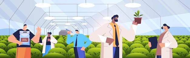 Mix race agraringenieure, die pflanzen im gewächshaus erforschen landwirtschaftswissenschaftler smart farming