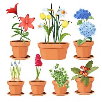 Moderne blumentöpfe. farbige zierpflanzenbaum-tulpenillustrationen