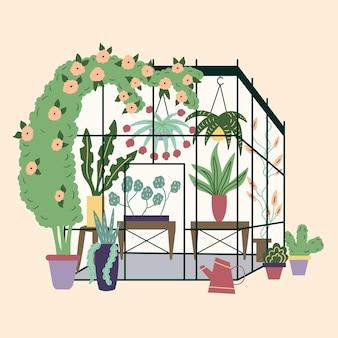 Moderne hausgewächshauspflanzen garten gelockte efeublumentöpfe winterglasgartenhausgewächshaus