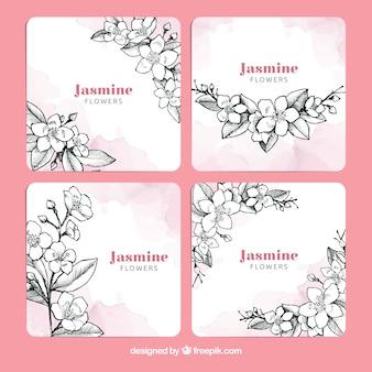 Moderne packung mit handgezeichneten jasminkarten