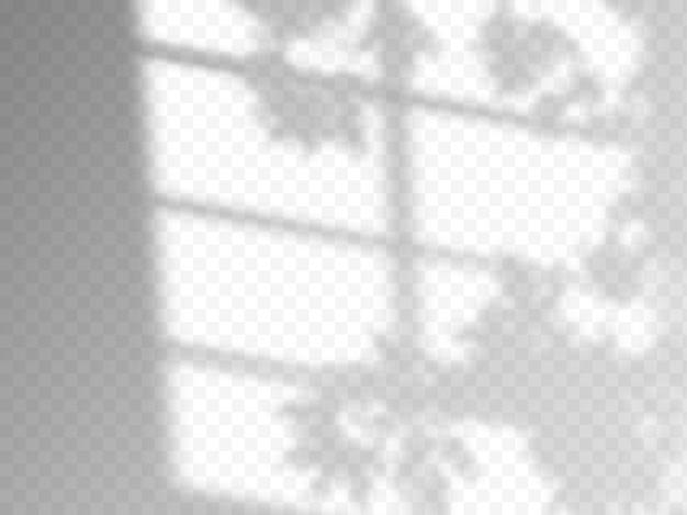 Moderne schattenüberlagerung, tolles design für jeden zweck. unscharfer weicher schatten vom fenster und pflanzenzweige außerhalb des fensters. natürliche schatten auf transparentem hintergrund isoliert.