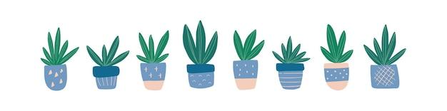Moderne wohnkultur mit handgezeichneter zimmerpflanze sukkulente