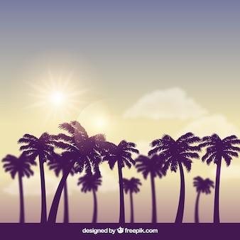 Moderner tropischer hintergrund mit realistischem design