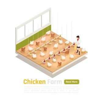 Modernes isometrisches element der hühnergeflügelfarm mit automatischer bewässerungsfütterung und eiersammelsystem