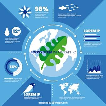 Modernes ökosystem infographic mit flachem design