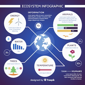 Modernes ökosystem infographics konzept