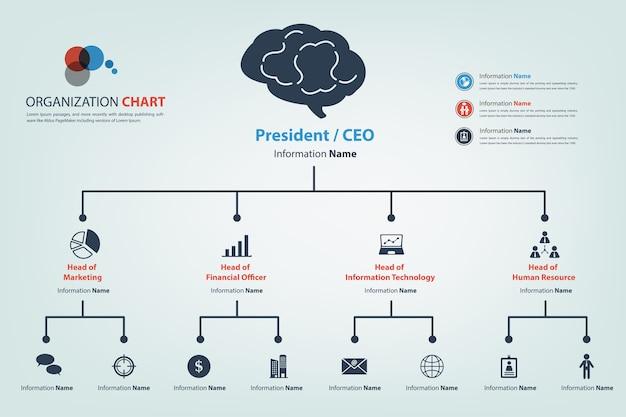 Modernes und intelligentes organisationsdiagramm in der vektorart