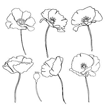 Mohnblumen in einem linearen stil. einfache blumen