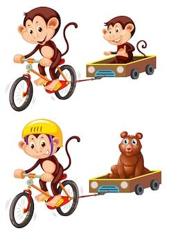 Monkey riding fahrradanhänger
