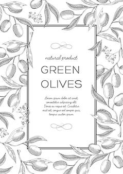 Monochrome quadratische rahmenkomposition mit olivenbeeren, blüten und nützlichen informationen in der mitte