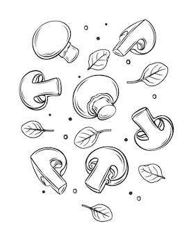 Monochrome rohe champignons und basilikumblätter umreißen illustration