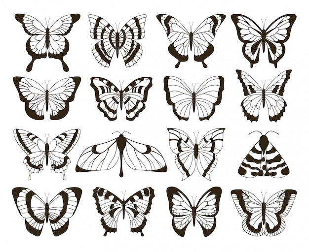 Monochrome schmetterlinge. schwarzweiss-zeichnung, handgezeichnetes tattoo formt vintage-sammlung. schmetterling isoliert set