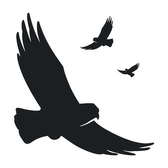 Monochrome silhouette eines fliegenden vogeladlers
