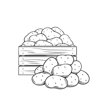Monochrome umrissillustration der kartoffelknollen