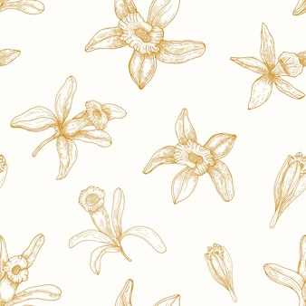 Monochromes nahtloses muster mit blühenden vanilleblumen, die mit konturlinien gezeichnet werden