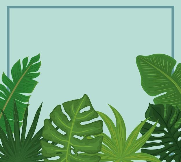 Monstera tropisches banner