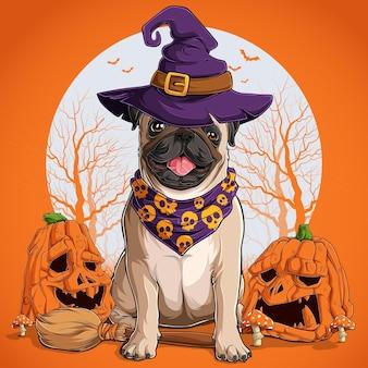 Mops hund in halloween verkleidung sitzt auf einem besen und trägt hexenhut mit kürbissen an den seiten