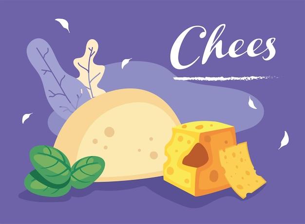 Mozzarella-käse und scheiben von gelbem käse