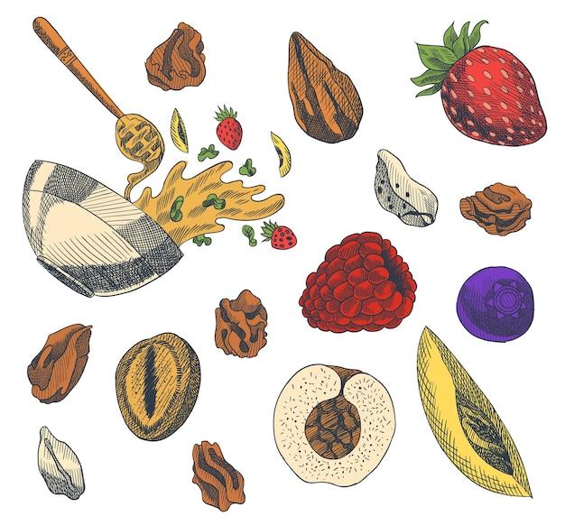 Müsli gravierte stilillustration. verschiedene beeren, früchte und nüsse. hausgemachtes leckeres set. zutaten für die herstellung von müsli. gesundes frühstück. hand gezeichnete illustration.