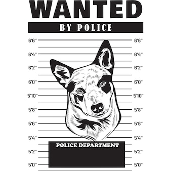 Mugshot von australian cattle dog mit banner hinter gittern