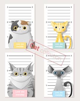 Mugshot von niedlichen katzen