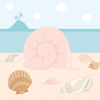 Muschel und muscheln illustration
