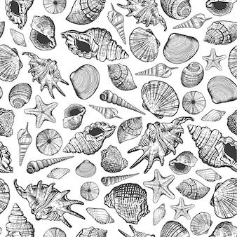 Muscheln nahtloses muster. realistischer hand gezeichneter meereshintergrund mit aquatischer molluskenschale des naturozeans