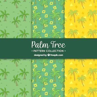 Muster mit zeichnungen satz von palmen