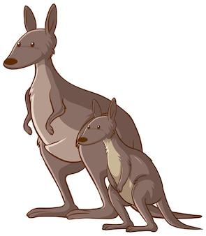 Mutter und baby-känguru-cartoon auf weißem hintergrund Premium Vektoren