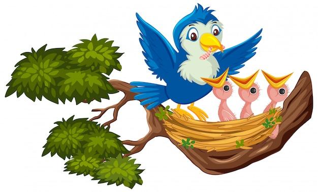 Mutter vogel füttert küken