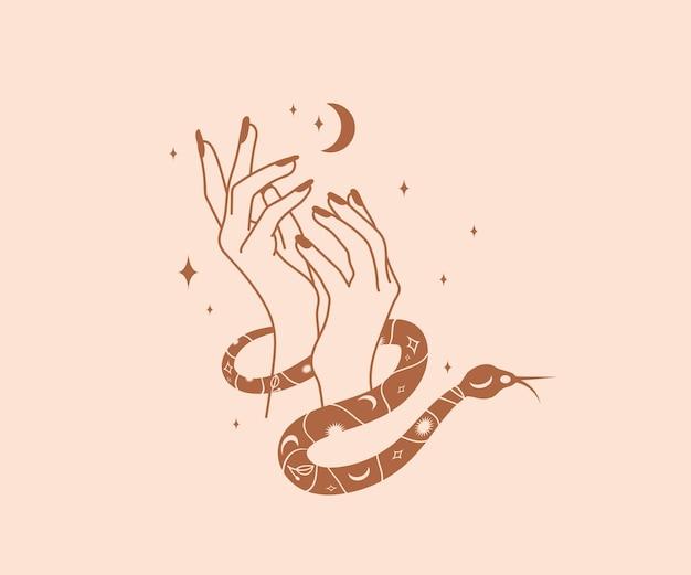 Mystische schlange wickelt sich um weibliche, schöne hände mit magischen elementen der mondsterne