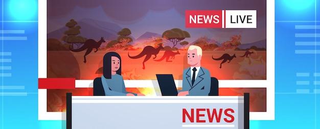 Nachrichtenreporter leben das brodcasting-känguru, das von den waldbränden in australien-buschfeuer-konzept der globalen erwärmung des naturkatastrophen fernsehstudio-innenporträt horizontal läuft
