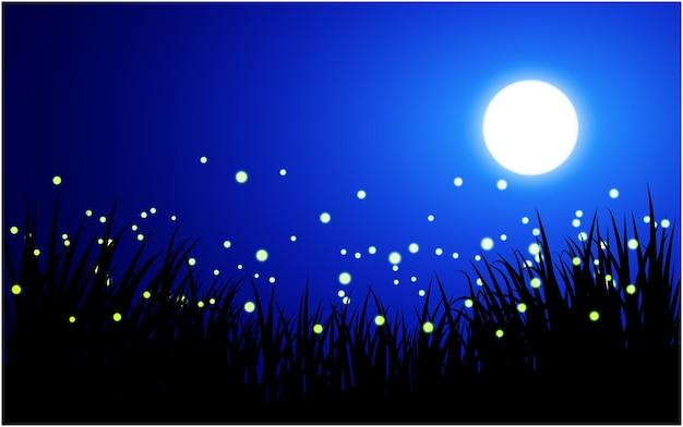 Nachtillustration mit glühwürmchen