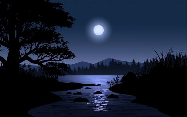 Nachtlandschaft im wald mit strom