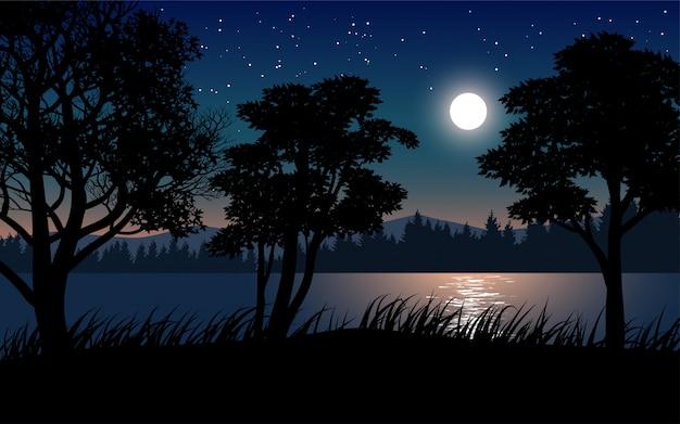 Nachtlandschaft mit bäumen im flussufer