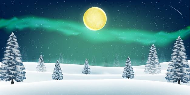 Nachtwinterschnee-waldhügel mit aurora im himmel