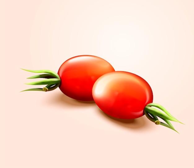Nahaufnahme betrachten frische tomaten im 3d-stil Premium Vektoren